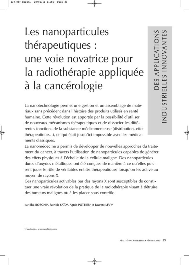 2010 – Concept of NBTXR3 – Borghi et al.